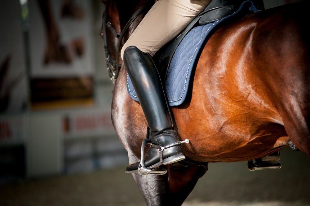 Dressage boots for riders