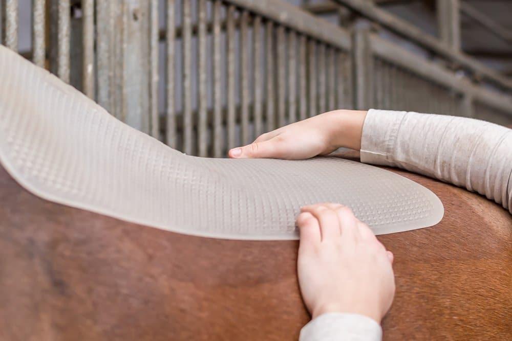 Gel saddle pad on horse's back